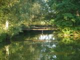 Pont de l'étang de l'Esclatière